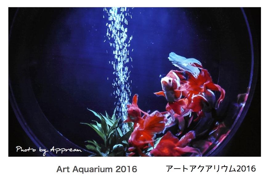 アートアクアリウム 2