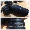 Sony α7IIに『キャノン用Sigma APO 70-300mm DG MACRO』で撮ってみた